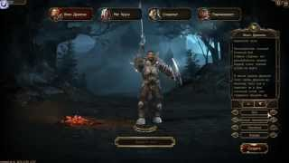 Drakensang Online браузерная игра (обзор)