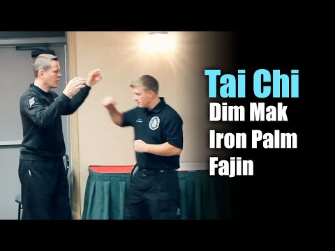 Tai Chi Dim Mak, Fajing & Iron Palm Q&A w/ Richard Clear @ Tai Chi Gala in Albany NY