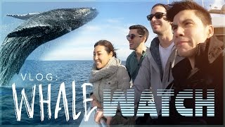 Repeat youtube video VLOG: WHALE WATCH 2017!!