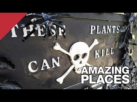 The Poison Garden of Alnwick