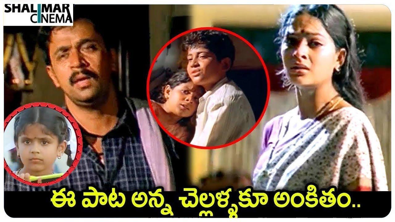 Puttintiki Ra Chelli Video Song || Puttintiki Ra Chelli Movie Songs  || Shalimarcinema