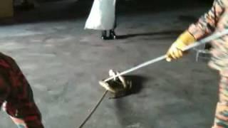 Ular sawa ceroboh masuk gudang beras