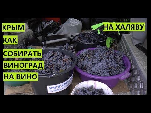 Крым. Как собрать