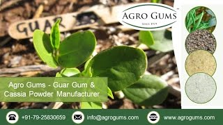 The regulations followed in applying guar gum product in textile printing