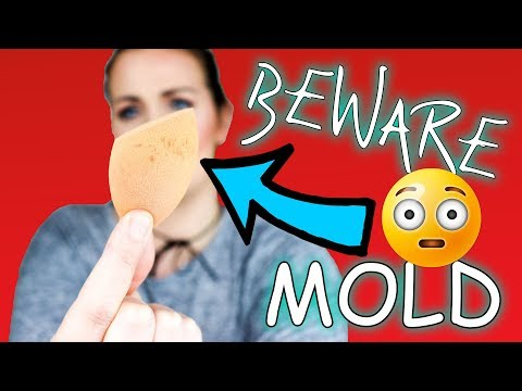 I FOUND MOLD IN MY MAKEUP SPONGE - REALTECHNIQUES / cleaning beauty blender (2018)   Clairetutorials