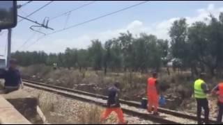 Scontro fra treni tra Corato e Andria.