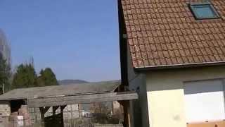 luttenbach munster