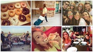 Orlando 2 - Compras, Target, Dollar Tree, TJMax e Pizza #EuNoTreeTrek