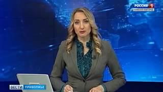 Россия 1: Вести Нижний Новгород выставка Навигатор поступления (январь 2017)