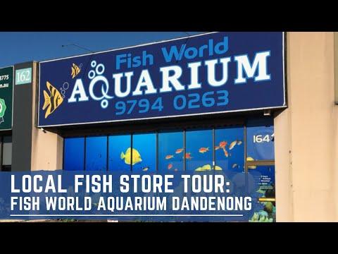 Local Fish Store Tour - Fish World Aquarium Dandenong