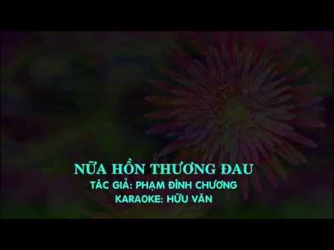 Karaoke-NỮA HỒN THƯƠNG ĐAU beat