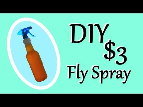 DIY Fly Spray Recipe   $3 Fly Spray