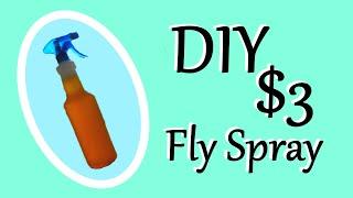 DIY Fly Spray Recipe | $3 Fly Spray