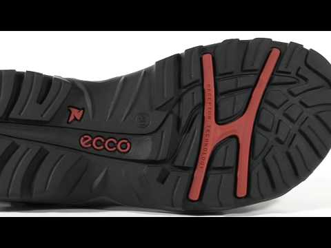 ecco powered by receptor technology