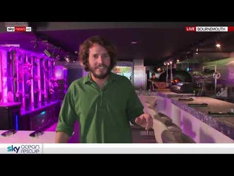 Terroir Tapas on Sky News - sustainability award winner Mp3