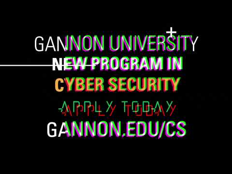 Gannon University's Cyber Security Degree 15