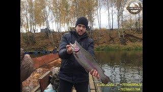 Рыбалка в Подмосковье!!!Клев форели!!! Форель клюет!!!Много рыбы!!!