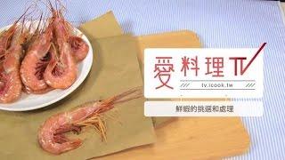 【蝦子】蝦子怎麼去腸泥?看這裡|海鮮挑選與處理 x 愛料理TV