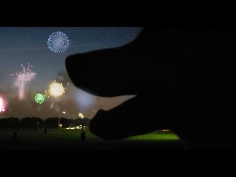 Firework Show with Huskies + BBQ and Sonic