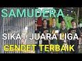 Cendet Samudera Sabet Juara Liga Cendet Terbaik Dalam Kondisi Kurang Vit  Mp3 - Mp4 Download