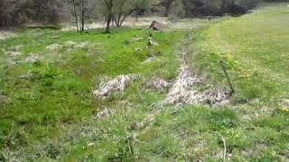 広~い芝生の奥には可愛い小川があります。