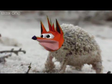 Angry Woah