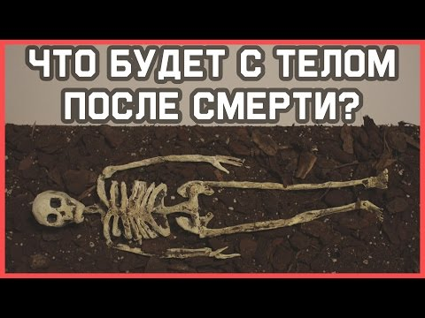 ДУША ПОСЛЕ СМЕРТИ -