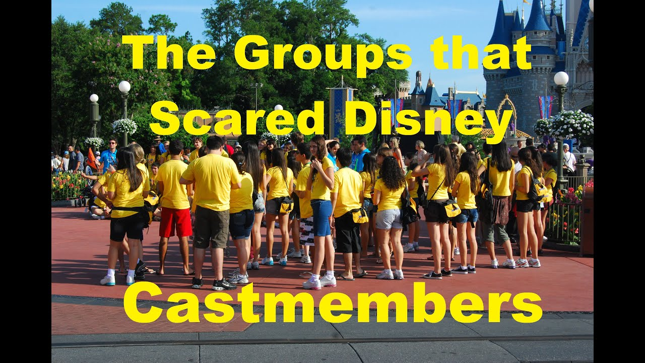 The Groups That Had Disney World Cast