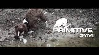Primitive Gym short film 2016