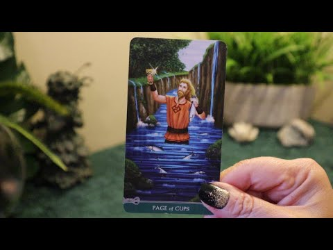 the-daily-vibe....oh,-a-heartfelt-message-is-coming...daily-tarot-reading
