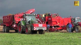 Neuer GRIMME Kartoffelroder SE 260 auf dem GRIMME Feldtag in Bargdorf