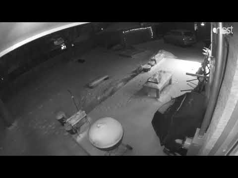 Backyard Meteor, Ann Arbor Michigan 16-Jan-2017