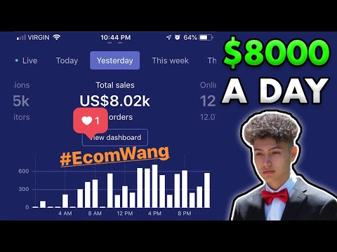 How My Student Does 8K a DAY Dropshipping! thumbnail