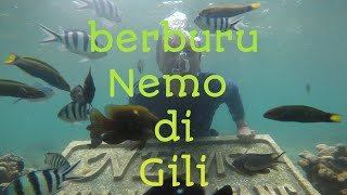 Wisata Gili Ketapang Island berburu Nemo uyak guide Batu malan…