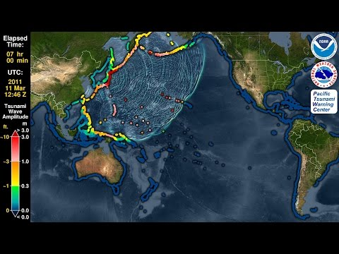 Tsunami Forecast Model Animation: Japan 2011