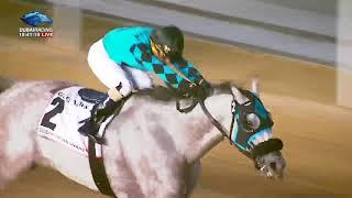 Dubai World Cup 2018   Race 6 - Dubai Golden Shaheen Sponsored By Gulf News