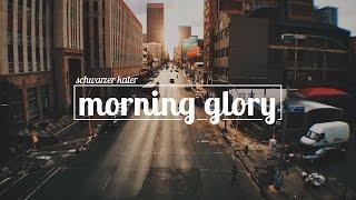 Schwarzer Kater - Morning Glory