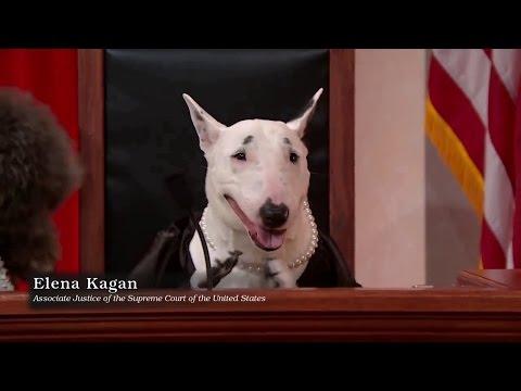 United States v. Kebodeaux: Oral Argument - April 17, 2013