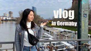 ??독일 교환학생 | 마지막 프랑크푸르트 여행기 | 슈…