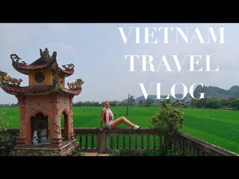 Vietnam Travel Vlog || PIGLETS & PUPPIES