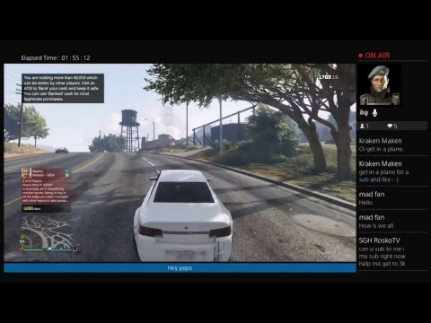 mad_fan1  GTA V Sunday madness