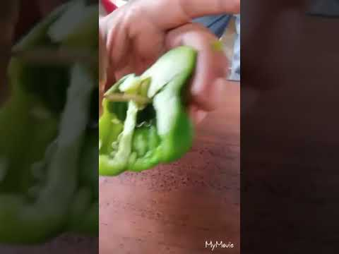 Worm Found Inside Capsicum    Clean Vegetables Properly Before Use.