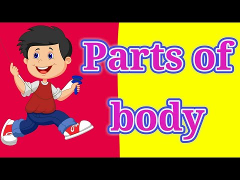 parts of body  class 3rd sub english page no.2