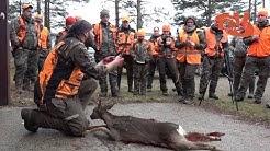 Päntäneen metsästysseuran jousimetsästysviikonloppu