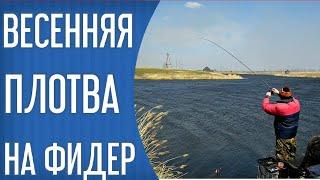 Ловля весенней плотвы на фидер Рыбалка 2021