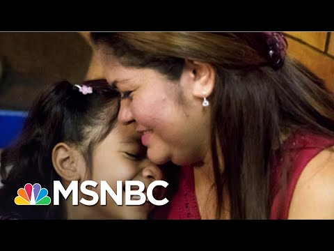 Biden Forms Task Force To Reunite Separated Families   The ReidOut   MSNBC