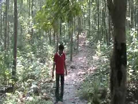 DEBA IN BANKURA FOREST