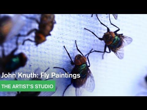 Artist Feeds House Flies Watercolor Pigments and Lets Them Paint by Regurgitation