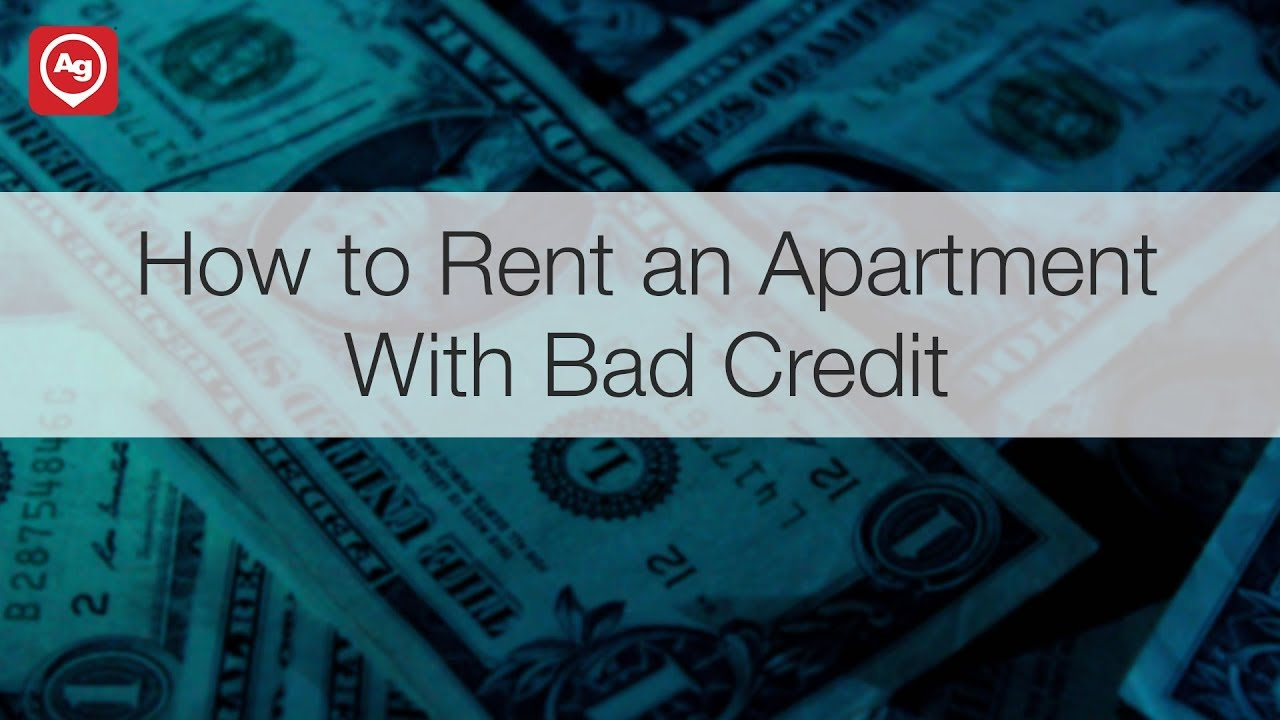 Can You Rent an Apartment with Bad Credit? | ApartmentGuide com