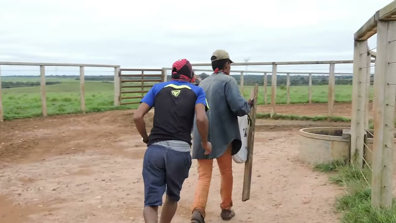 """BRAZIL - Video """"Long live the resistance of the peasants of the Camp Manoel Ribeiro"""""""